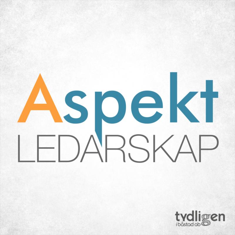 Logotyp Aspekt Ledarskap